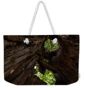 Sky View Through A Hollow Tree Trunk Weekender Tote Bag