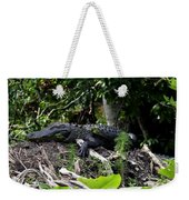Sleeping Alligator Weekender Tote Bag