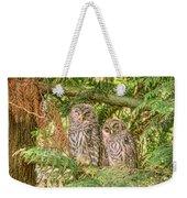 Sleeping Barred Owlets Weekender Tote Bag
