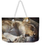 Sleeping Beauty,  Houston Zoo Weekender Tote Bag