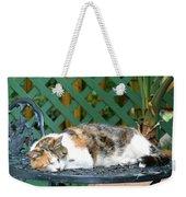 Sleeping Cutie Weekender Tote Bag