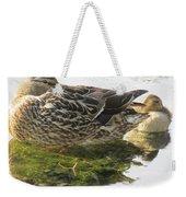 Sleeping Ducks. Weekender Tote Bag