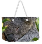 Sleeping Koala - Canberra - Australia Weekender Tote Bag