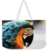 Sleeping Macaw Weekender Tote Bag