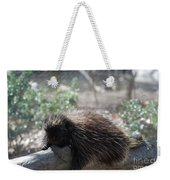Sleeping Porcupine With Lots Of Quills Weekender Tote Bag