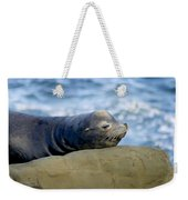 Sleeping Sea Lion Weekender Tote Bag