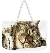 Sleeping Tabby Cat  Weekender Tote Bag