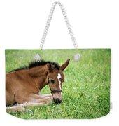 Sleepy Foal Weekender Tote Bag