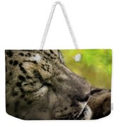 Sleepy Kitty Weekender Tote Bag