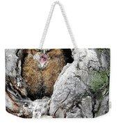 Sleepy Owlet Weekender Tote Bag
