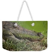 Sleepy Papa Gator Weekender Tote Bag