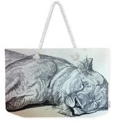 Slepping Lion Weekender Tote Bag