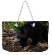 Sloth Bears Melursus Ursinusat Weekender Tote Bag