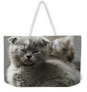 Slumbering Cat Weekender Tote Bag