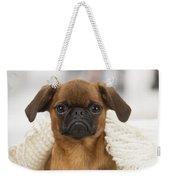 Small Brabant Griffon, Petit Brabancon, Dog  Weekender Tote Bag