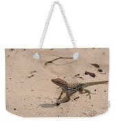 Small Brown Lizard Sitting On A White Sand Beach Weekender Tote Bag