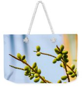 Small Coconuts I Weekender Tote Bag