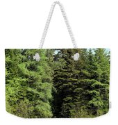 Small Country Pond Weekender Tote Bag