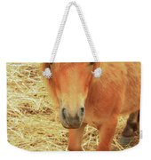 Small Horse Large Beauty Weekender Tote Bag