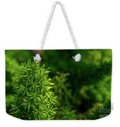 Small Plants Weekender Tote Bag