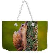 Snail Climbing The Tall Grass Weekender Tote Bag