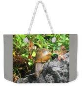 Snail Weekender Tote Bag by PJ Boylan