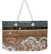 Snails At Home With Lichen Weekender Tote Bag