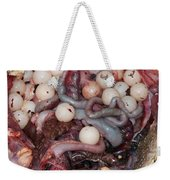 Snapping Turtle Dissection Weekender Tote Bag