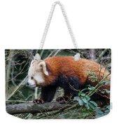 Sneaky Red Panda Weekender Tote Bag