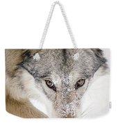 Sneaky Wolf Weekender Tote Bag