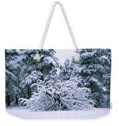 Snow Burdened Tree In The Flatirons Weekender Tote Bag