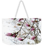 Snow Capped Magnolia Tree Blossoms 2 Weekender Tote Bag