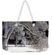Snow Covered Black Oak Yosemite National Park Weekender Tote Bag
