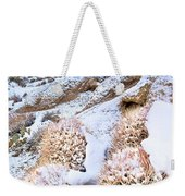 Snow Covered Cactus Below Mount Whitney Eastern Sierras Weekender Tote Bag