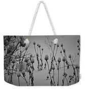 Snow Covered Coneflowers Weekender Tote Bag