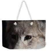 Snow Coyote Weekender Tote Bag