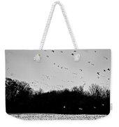 Snow Geese Winter Home In Delaware Weekender Tote Bag