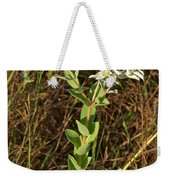 Snow-on-the-mountain Weekender Tote Bag