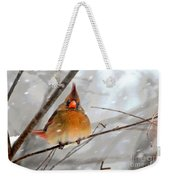 Snow Surprise Weekender Tote Bag by Lois Bryan