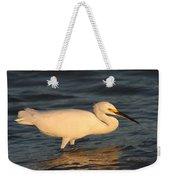 Snowy Egret By Sunset Weekender Tote Bag