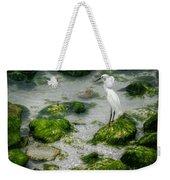 Snowy Egret On Mossy Rocks Weekender Tote Bag