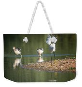 Snowy Egret Stretch 4280-080917-2cr Weekender Tote Bag