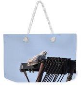 Snowy Owl 2959 Weekender Tote Bag