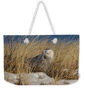 Snowy Owls On The Beach Weekender Tote Bag