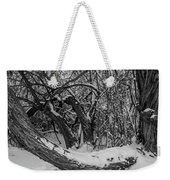 Snowy Tree Bench In Black And White Weekender Tote Bag