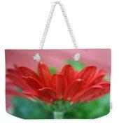 Soft Red Weekender Tote Bag