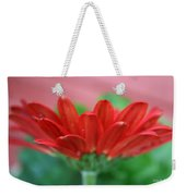 Soft Red Weekender Tote Bag
