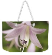 Softened Hosta Bloom Nature Photograph  Weekender Tote Bag