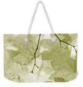 Softness Of Olive Green Maple Leaves Weekender Tote Bag