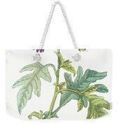 Solanum Quercifolium Weekender Tote Bag